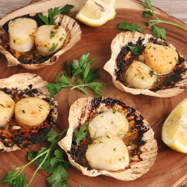Grilled Scallops On the Half Shell