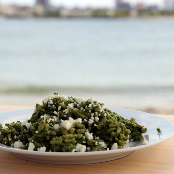 Orzo with Spinach Pesto